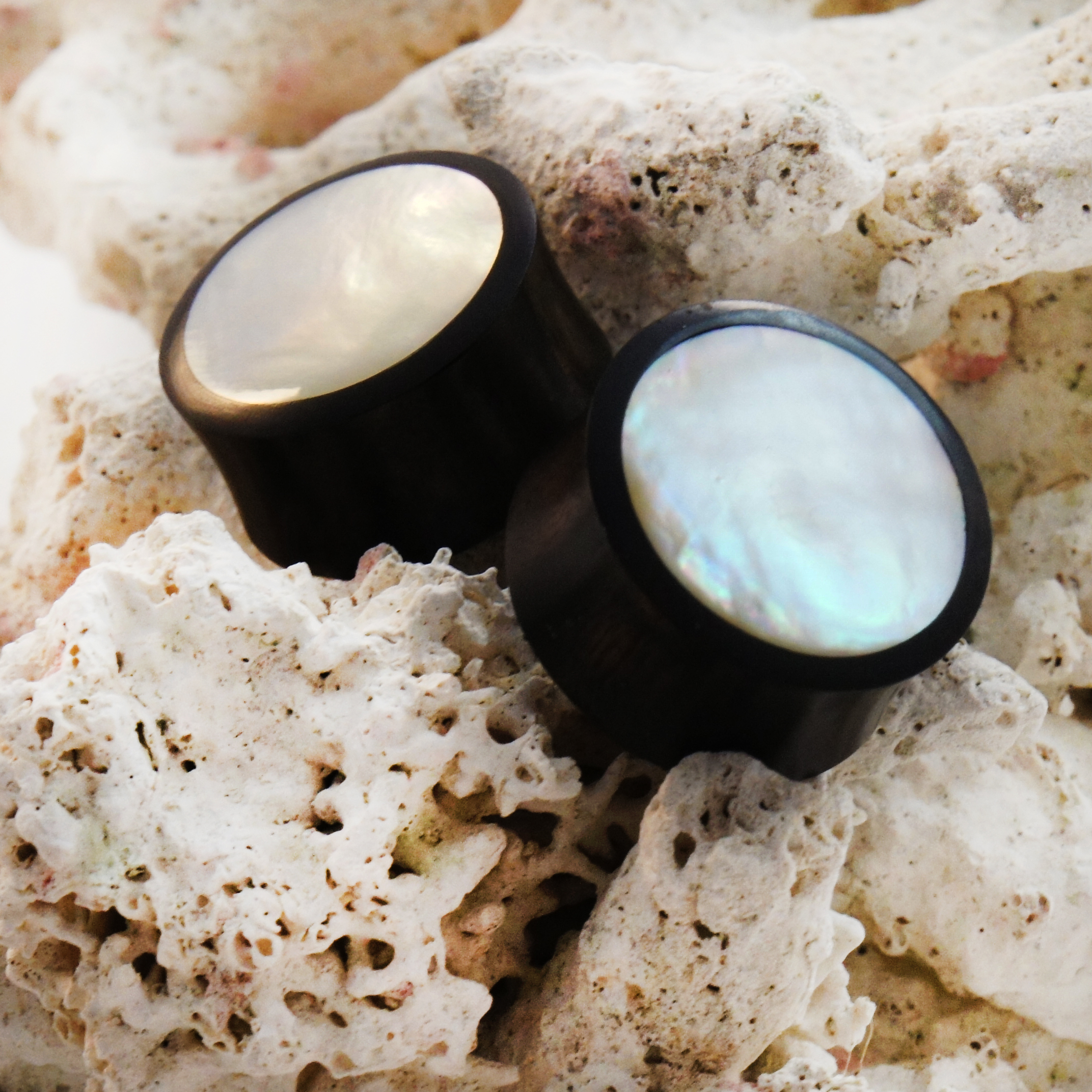 Mother Of Pearl Inlay Double Flared Areng Wood Plugs