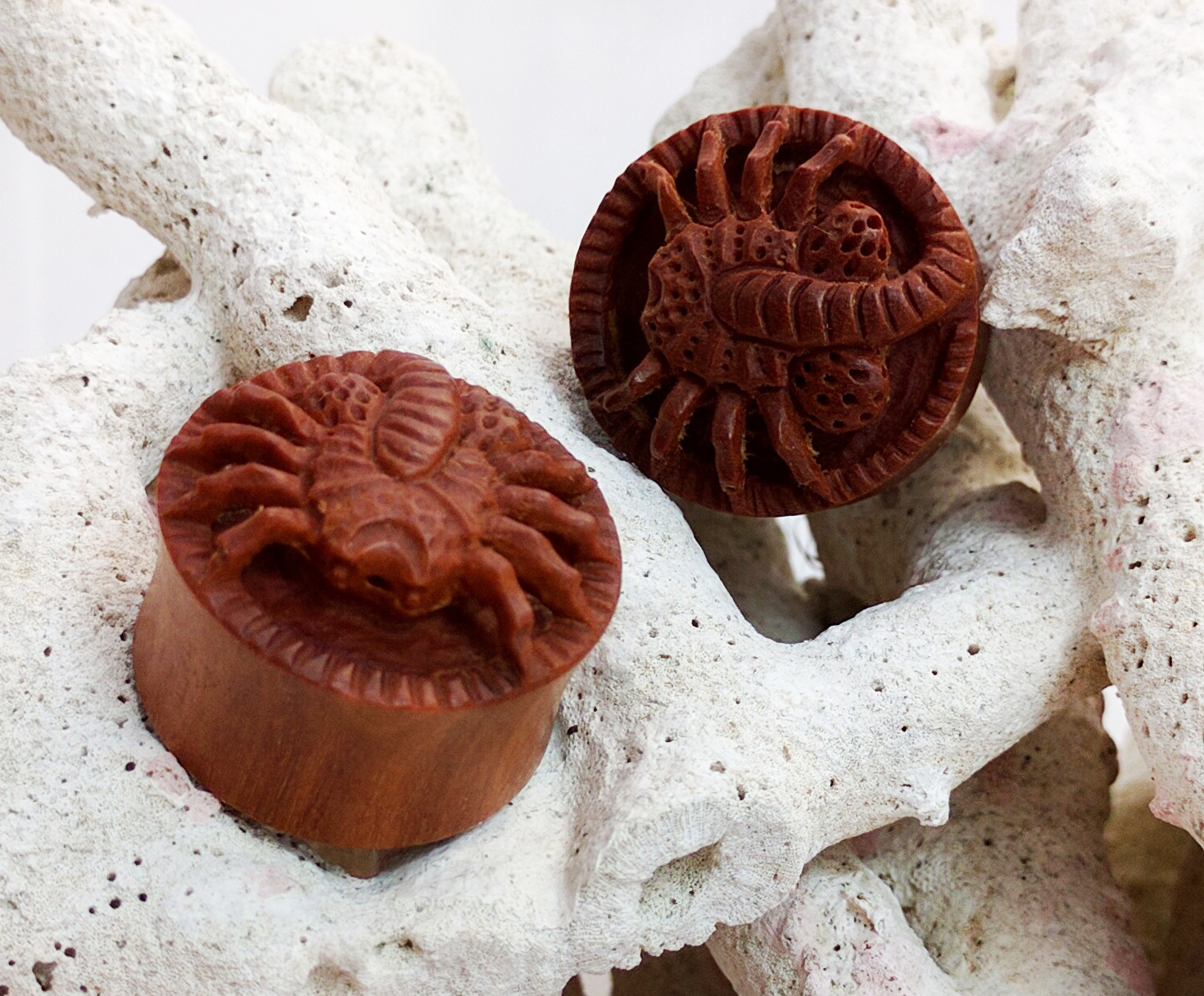 Sawo Wood Face Hugging Spider Double Flared Plugs