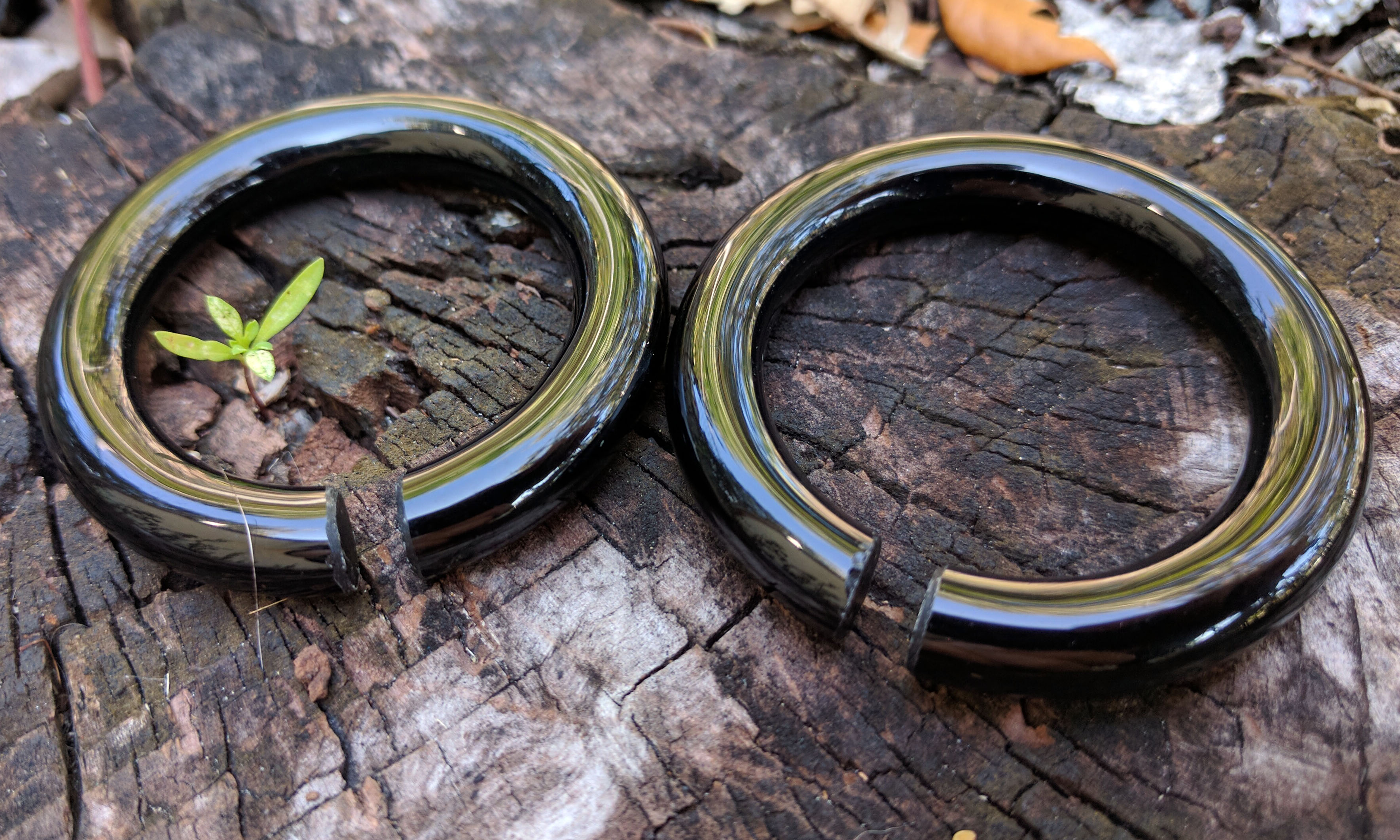 Black Obsidian Circle Hoop Weights