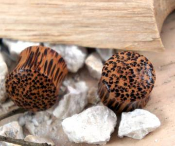 Solid Double Flare Coconut Wood Plug