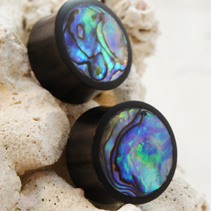 Abalone Inlay Double Flared Areng Wood Plugs