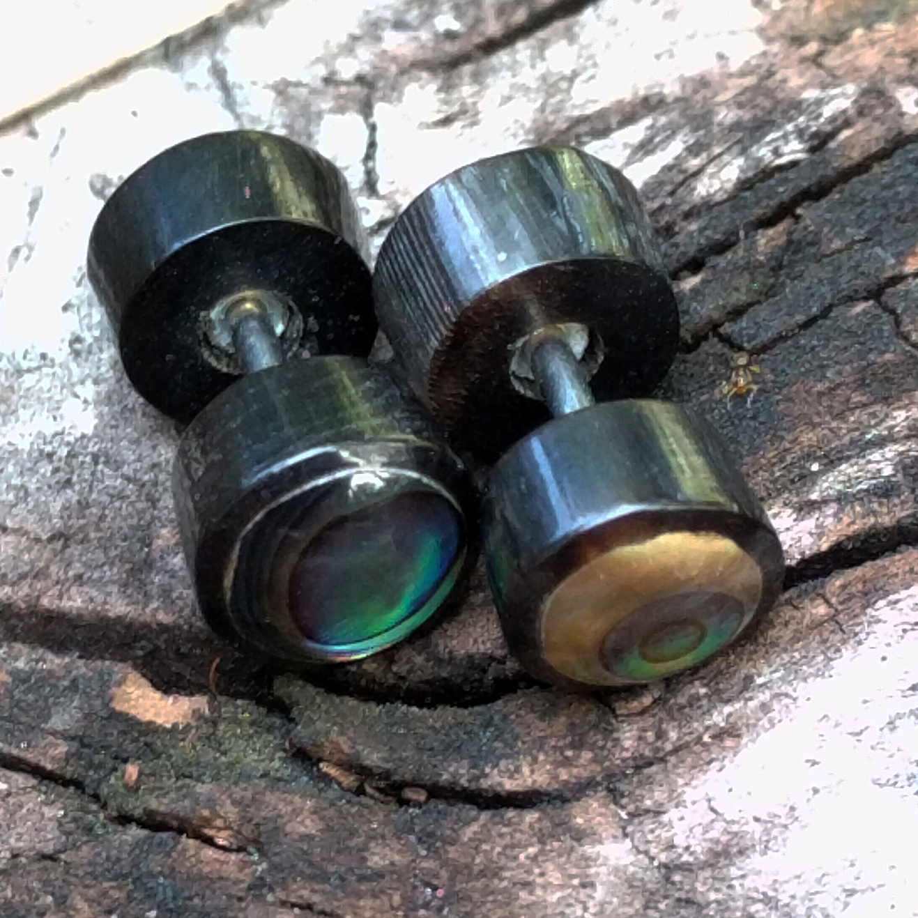 Painted Black Fake Plug with Abalone Shell Inlay
