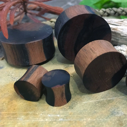 Zebra Wood Concave/Convex Plugs